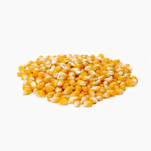 Milho para Pipoca 500 gramas