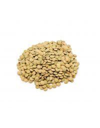 Lentilha - granel